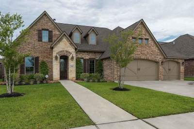 Lumberton Single Family Home For Sale: 320 Chaple Creek Drive