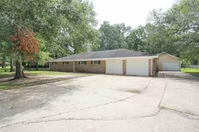 Bevil Oaks Single Family Home For Sale: 7850 Sweetgum Rd