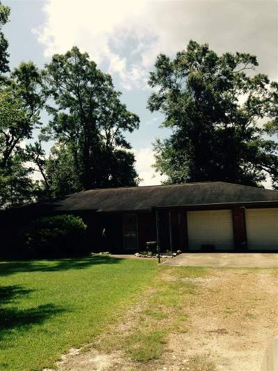 Lumberton Single Family Home For Sale: 8986 Cedar Drive