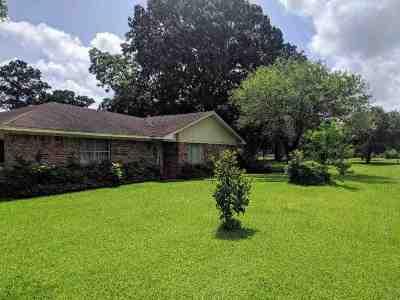 Beaumont Single Family Home For Sale: 5990 Avie Lane