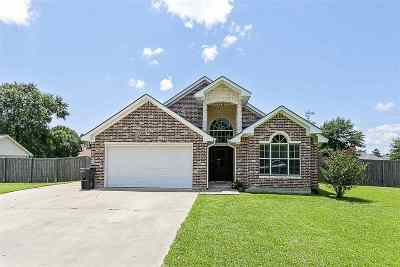 Single Family Home For Sale: 11240 Cathryn