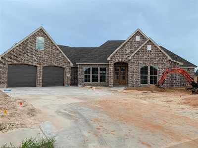 Single Family Home For Sale: 6575 Georgetown Lane