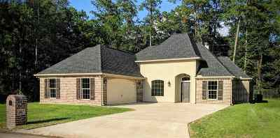 Vidor Single Family Home For Sale: 210 Richelle