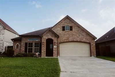 Nederland Single Family Home For Sale: 169 Sterling Ridge