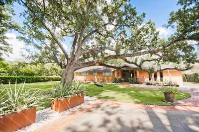 Beaumont Single Family Home For Sale: 1980 Thomas Road