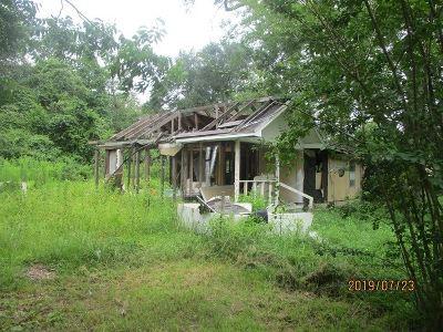 Vidor Single Family Home For Sale: 195 Denver