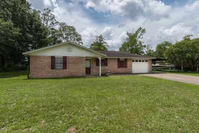 Lumberton Single Family Home For Sale: 180 Lynn Dr