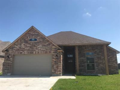 Port Arthur Single Family Home For Sale: 10530 Dominion Ranch Drive