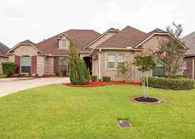 Beaumont Single Family Home For Sale: 3625 Canyon Ln