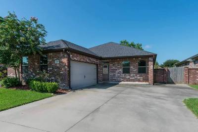 Beaumont Single Family Home For Sale: 6325 Highpoint Avenue