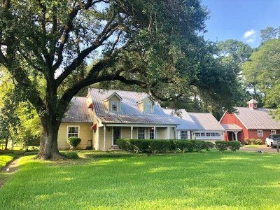 Beaumont Single Family Home For Sale: 4270 Folsom Drive
