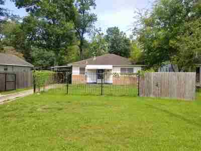 Beaumont Single Family Home For Sale: 1620 W Lucas Drive