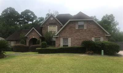 Beaumont Single Family Home For Sale: 6875 Broadleaf Dr