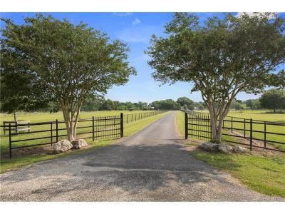 Bryan , College Stat Single Family Home For Sale: 3434 Fazzino Lane