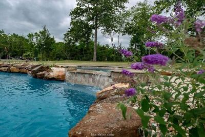 Bryan, College Station Single Family Home For Sale: 6560 Olympia Buddy Road