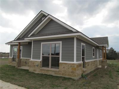 Brazos County Single Family Home For Sale: 3997 Vail Lane