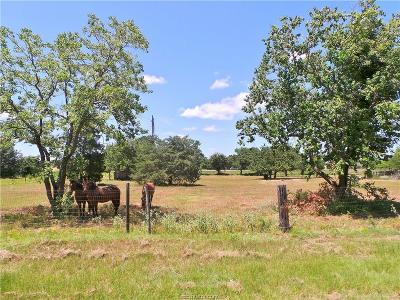 bryan Residential Lots & Land For Sale: 3701 & 3705 Elaine Drive