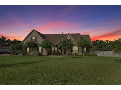 College Station Single Family Home For Sale: 17548 Saddle Creek Drive
