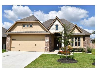 Bryan , College Station  Single Family Home For Sale: 4007 Alford Street