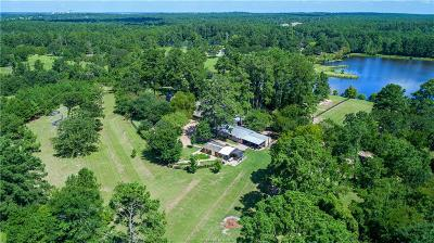 Grimes County Single Family Home For Sale: 7464 Rambling Lane