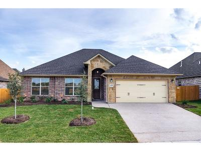 Creek Meadows Single Family Home For Sale: 4028 Crooked Creek Path