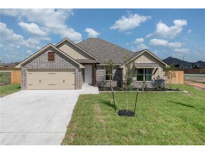 Bryan Single Family Home For Sale: 2902 Cistern Court