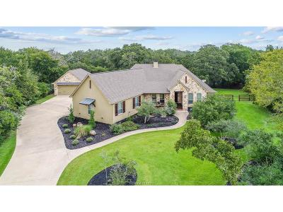 College Station Single Family Home For Sale: 17233 Sundance Drive