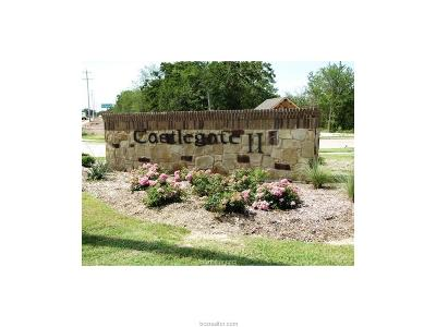 College Station Residential Lots & Land For Sale: 2702 Portland Avenue