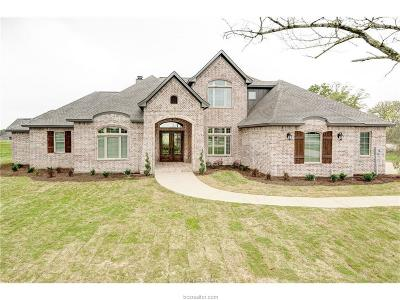 College Station Single Family Home For Sale: 18054 Wigeon Trail Court