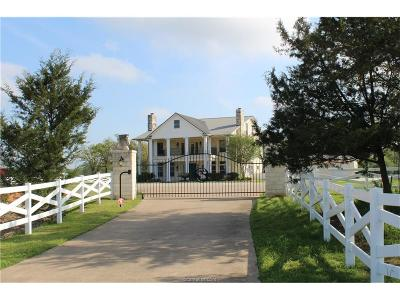 College Station Single Family Home For Sale: 13375 South Dowling Road