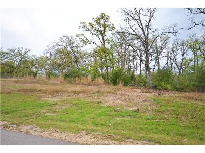 College Station Residential Lots & Land For Sale: 5205 Ruddy Duck Drive