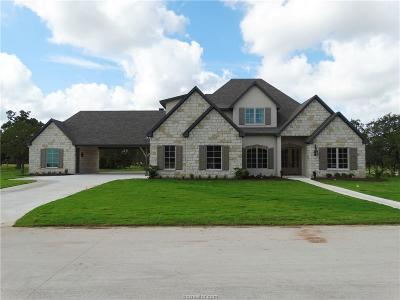 College Station Single Family Home For Sale: 4430 Williams Lake Drive