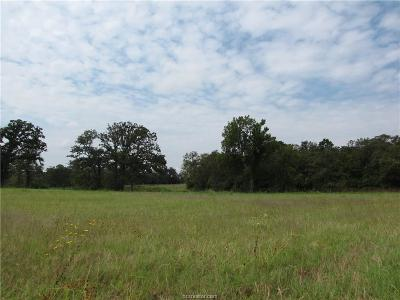 College Station Residential Lots & Land For Sale: 6083 Koppe Bridge Road