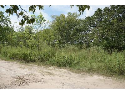 bryan Residential Lots & Land For Sale: 0000 Sandy Point Road