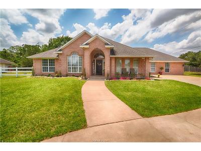 College Station Single Family Home For Sale: 16570 State Highway 6