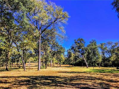 Robertson County Single Family Home For Sale: 4561 Shadow Woods Lane