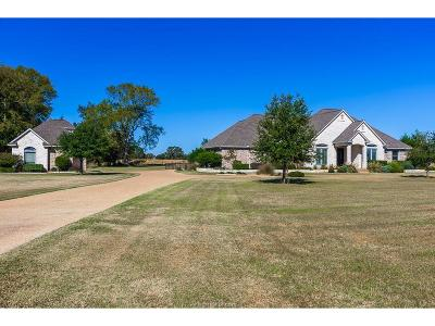 Bryan Single Family Home For Sale: 9685 Shadow Creek