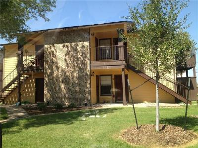 College Station Rental For Rent: 715a Wellesley Court