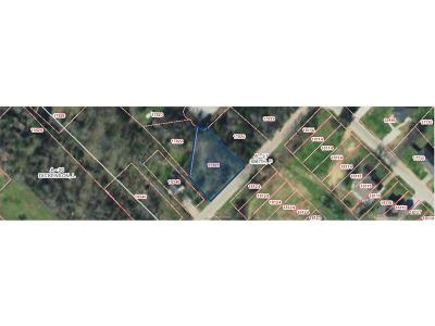 College Station, Bryan, Iola, Caldwell, Navasota, Franklin, Madisonville, North Zulch, Hearne Residential Lots & Land For Sale: 0000 Meadow Brook Drive