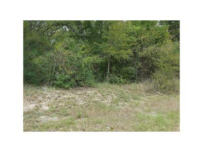 College Station Residential Lots & Land For Sale: 22 Woodview Pvt Drive