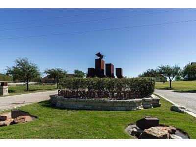 College Station Residential Lots & Land For Sale: 5220 Ruddy Duck Drive