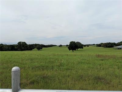 Milam County Single Family Home For Sale: 466 County Road 280