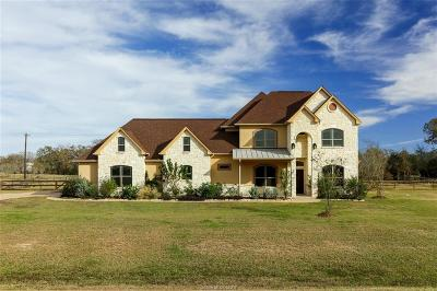 College Station Single Family Home For Sale: 17515 Lariat Lane
