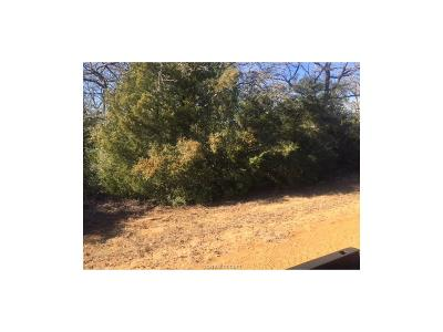 Residential Lots & Land For Sale: 65 Valley View Drive
