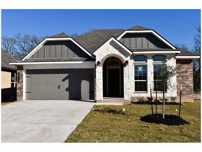 Bryan Single Family Home For Sale: 2119 Stubbs Drive