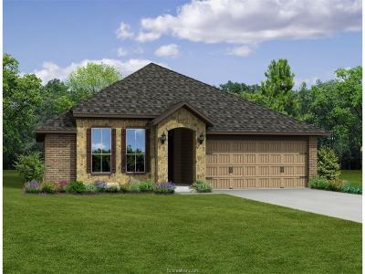 Bryan Single Family Home For Sale: 2120 Stubbs Drive