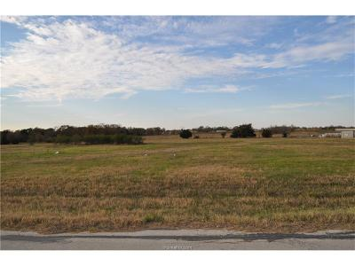 Brazos County Residential Lots & Land For Sale: 3778 Endeavor Loop