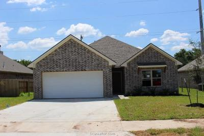Bryan Single Family Home For Sale: 3080 Peterson Circle