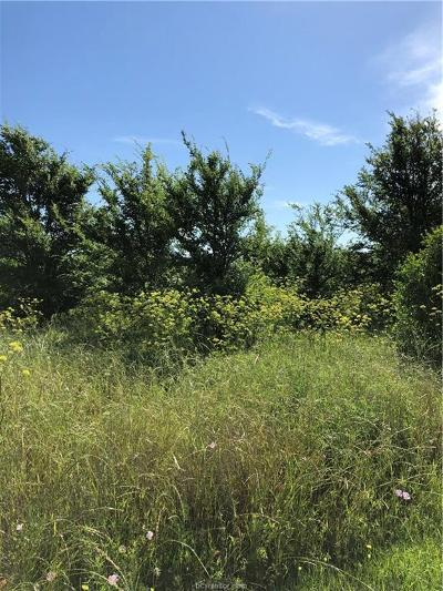College Station Residential Lots & Land For Sale: 6501 Hardy Weedon Road