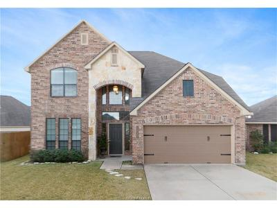 Bryan Single Family Home For Sale: 1022 Venice Drive